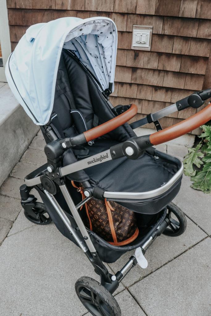 Mockingbird Stroller Review + Video Walk Through ...
