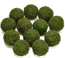 Moss balls