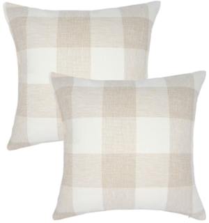 Set of 2 farmhouse pillows